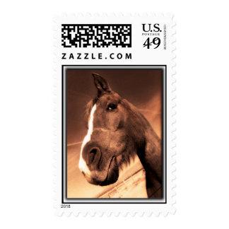 Golero the Arabian Postage Stamp