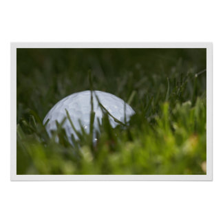 golf ball hiding poster