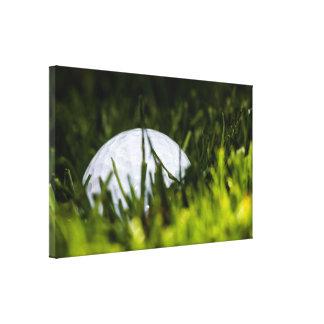 golf ball hiding remix canvas print