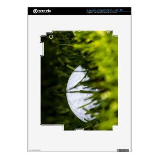 golf ball hiding remix iPad 3 decal