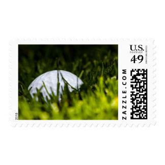 golf ball hiding remix postage