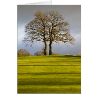 Golf Course and Autumn Tree Greeting Cards