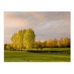 Golf Course in Autumn Postcard