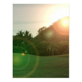 Golf Green Postcard