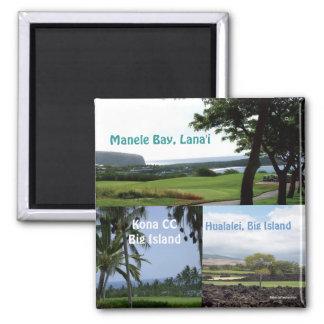 Golf Hawaii Magnet