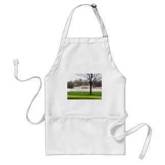Golf hole near water aprons