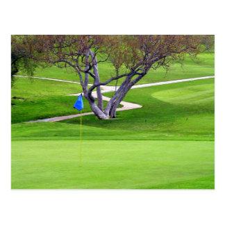Golf Invitation Post Card