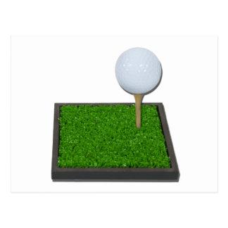 GolfBallOnTeeOnGrass102111 Postcard