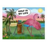 Golfer Flamingo - Golf is my life Postcard