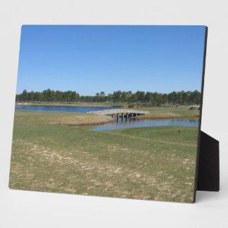 Golfing Golf Course Hole. Plaque