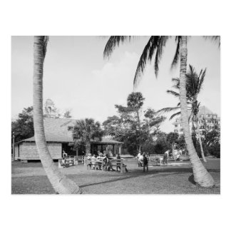 Golfing in Palm Beach, 1904 Postcard