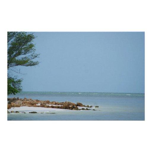 Golfo hermoso  papeleria