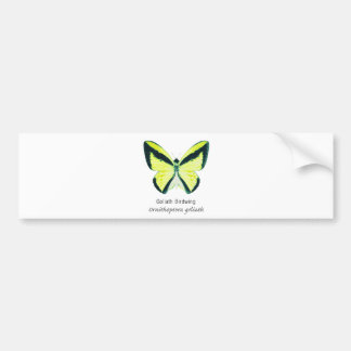 Goliath Birdwing Butterfly with Name Bumper Sticker