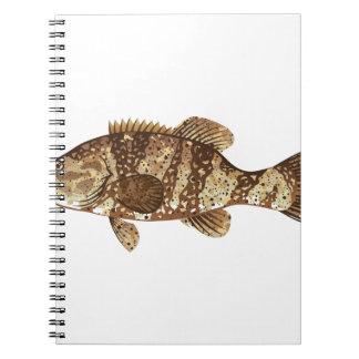 Goliath Grouper Gamefish ocean vector illustration Notebook