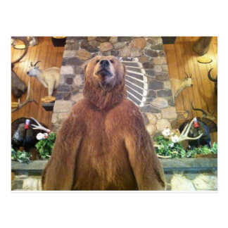 Goliath Space Farms Zoo World's Largest Bear Post Cards