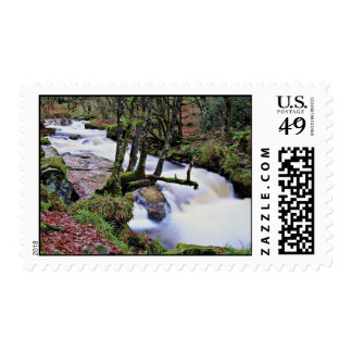 Golitha Falls, Cornwall, England  flowers Stamps