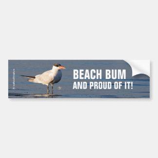 Golondrina de mar caspia en la playa pegatina para auto