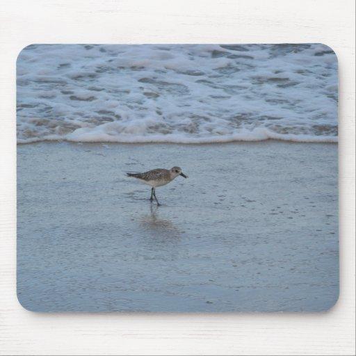 Golondrina de mar en el cojín de ratón de la playa mouse pads
