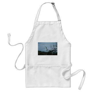 Golondrinas de mar blancas que se encaraman en ram delantales
