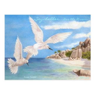 Golondrinas de mar de hadas tarjetas postales