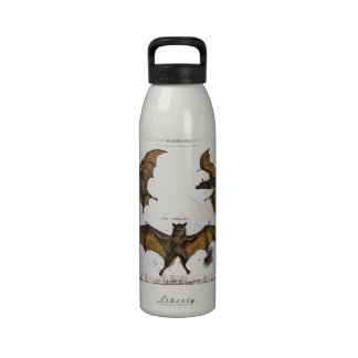 Golpea una placa educativa botella de agua reutilizable
