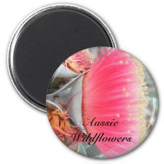 Goma rosada australiana imanes para frigoríficos