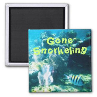 Gone Snorkeling Magnet