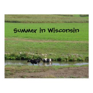 Gone Swimmin' Postcard
