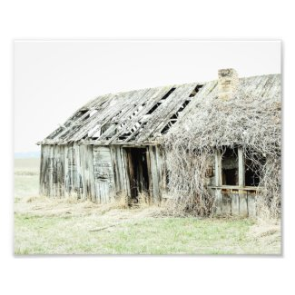 Good Bones Rural Farmhouse Style Barn Photo Print