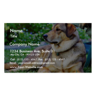 Good Dog Double-Sided Standard Business Cards (Pack Of 100)