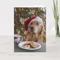 Good Dog! Holiday Card