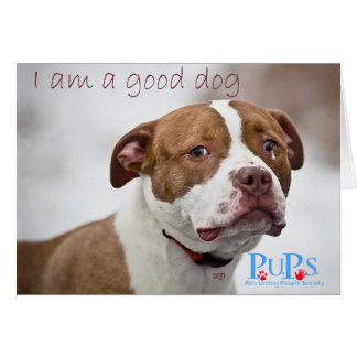 Good Dog Pit Bull Rescue Card
