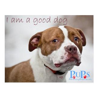 Good Dog Pit Bull Rescue Postcard