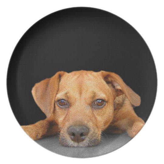 Good Dog Plate