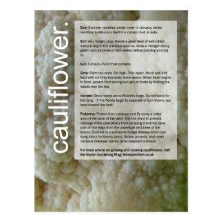 Good Growing Guide: Cauliflowers and Onions Postcard