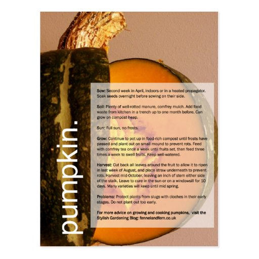 Good Growing Guide: Pumpkin & Chard Post Card