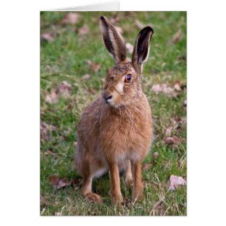 Good Hare Day Card