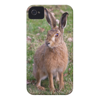 Good Hare Day iPhone 4 Case