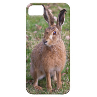 Good Hare Day iPhone 5 Case