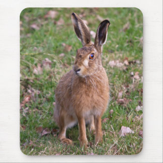 Good Hare Day Mousemat Mouse Pad