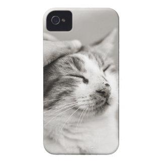 Good kitty! iPhone 4 case