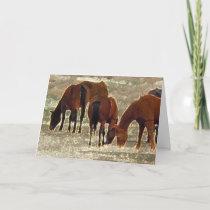 Good Lord's Remuda Herd in Heaven Sympathy Card