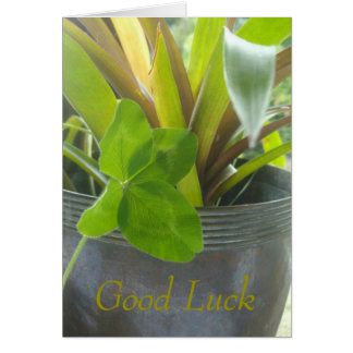 Good luck, 4 leaf clover and pot plant card