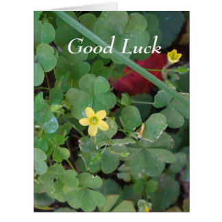 Good Luck Clover for Friend- Big Greeting Card