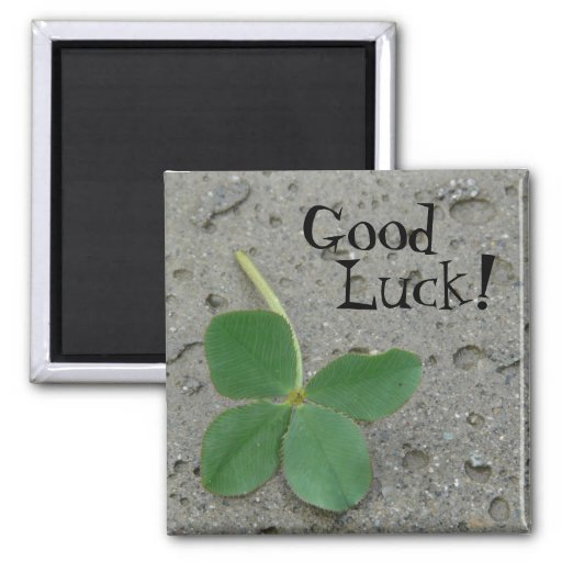 Good Luck! Four Leaf Clover 2 Inch Square Magnet