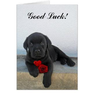 Good Luck labrador puppy Card