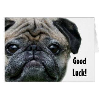 Good Luck Pug Dog greeting card