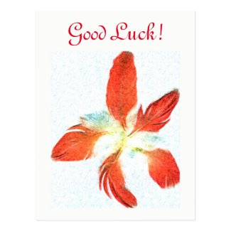 Good Luck - Red Feathers for protection postcard