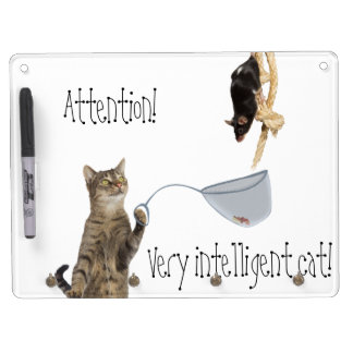 Good Lucktion! Very Intelligent cat! Dry-Erase Whiteboards