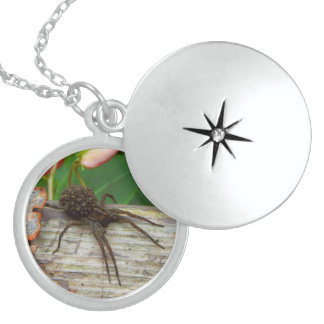 Good Mama Spider and Her Babies Sterling Silver Necklace